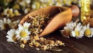 علاج حموضة المعدة بالأعشاب الطبيعية