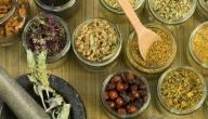 أعشاب تساعد على تخفيف الوزن