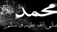ذكرى وفاة النبي صلى الله عليه واله وسلم
