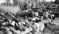 كم عدد القتلى في الحرب العالميه الثانيه