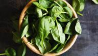 علاج خمول الغده الدرقيه بالغذاء