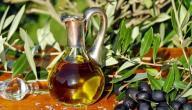 ما فوائد زيت الزيتون للوجه