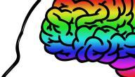 علم النفس والالوان