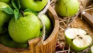 فوائد التفاح للتخسيس