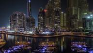 مدينة دبي الملاحية