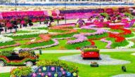 مدينة الورود في دبي
