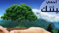حماية البيئة في الاسلام