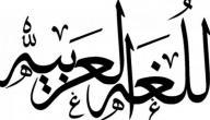 كيف اتعلم اللغة العربية بسرعة