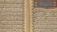 ما فائدة قراءة سورة يس