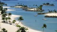 جزر سنغافورة