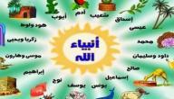 أسماء الأنبياء والرسل حسب التسلسل الزمني