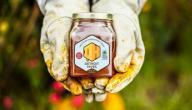 فوائد عسل النحل للتخسيس