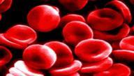 صغر حجم كريات الدم الحمراء