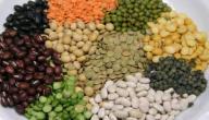 الفرق بين البروتين الحيواني والنباتي