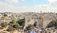 ما هي مدن فلسطين