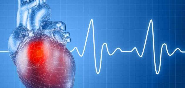 كم عدد نبضات القلب في الدقيقة