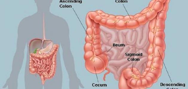 اعراض تهيج القولون الهضمي