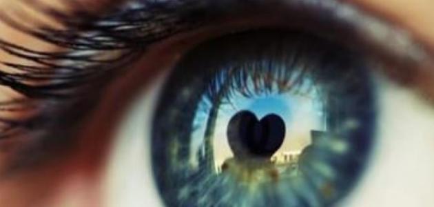 كيف تكون نظرات الحب