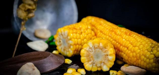 ما هي فوائد الذرة