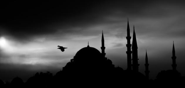 حكم من مارس العادة في رمضان