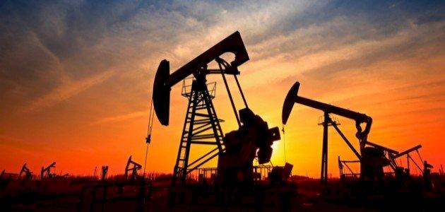 كيف يتكون النفط في باطن الارض