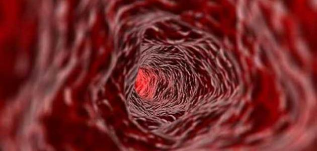 كم عدد كريات الدم الحمراء