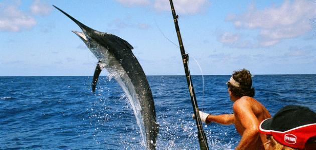 أحدثُ طُرق صيد السّمك