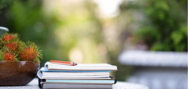 القصة القصيرة في الأدب العربي
