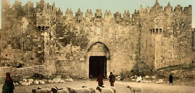 أين كان يعيش سيدنا سليمان عليه السلام