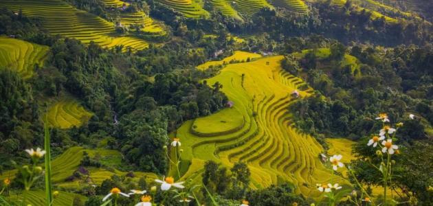 العوامل المؤثرة في مناخ قارة اسيا