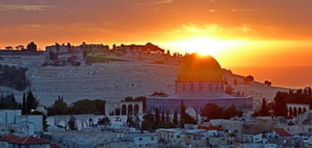 أهمية موقع فلسطين