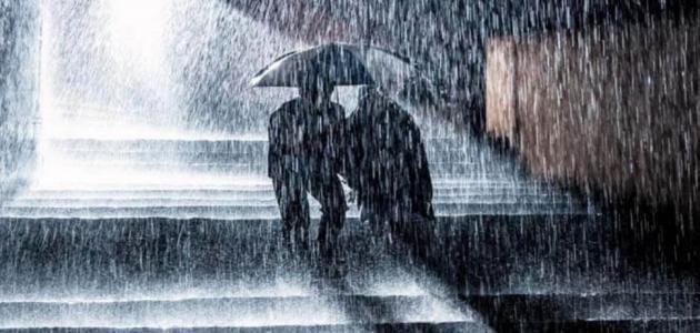 قصيدة عن المطر
