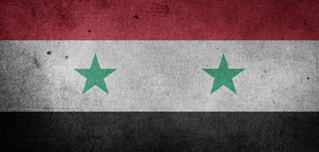 أين تقع مدينة تدمر في سوريا