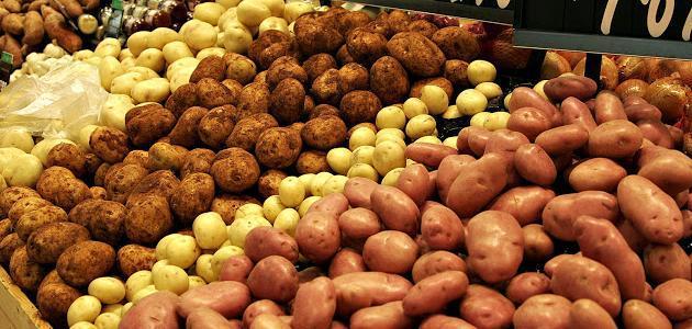 طرق زراعة البطاطس