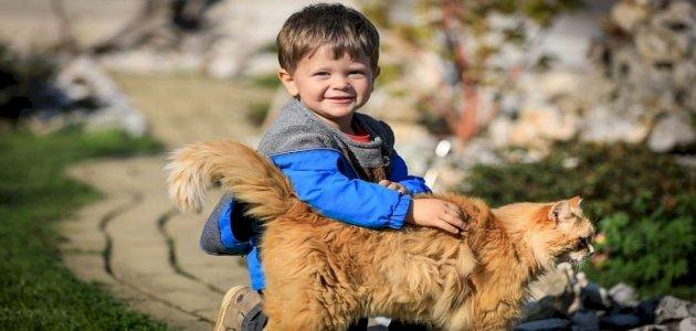 الحيوانات الأليفة تجعل طفلك أكثر سعادة!