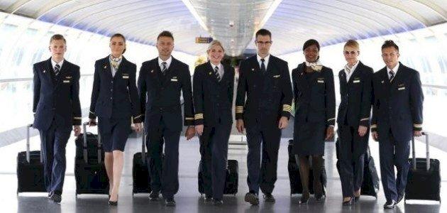 أفراد طاقم الطائرة: كل ما تود معرفته
