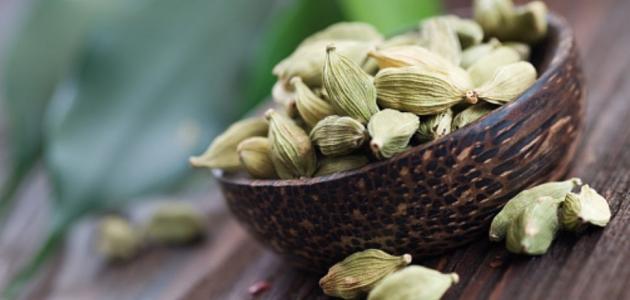 هل يمكن علاج ارتفاع ضغط الدم بالأعشاب؟