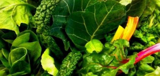 ما هي فوائد الخضروات الورقية