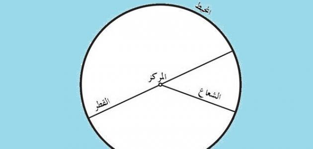 كم عدد أضلاع الدائرة