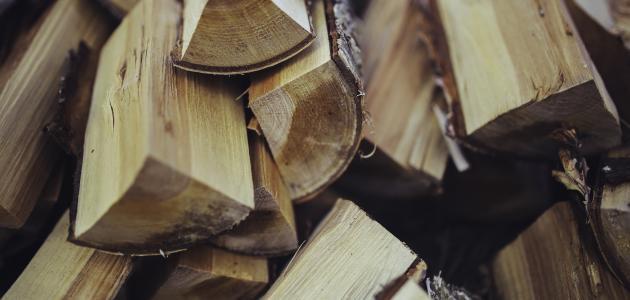 كيف يصنع الخشب
