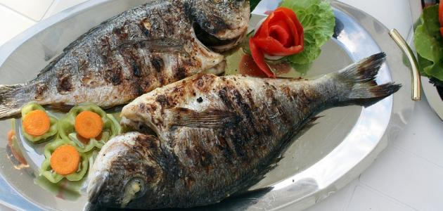 ما فوائد السمك المشوي للرجيم