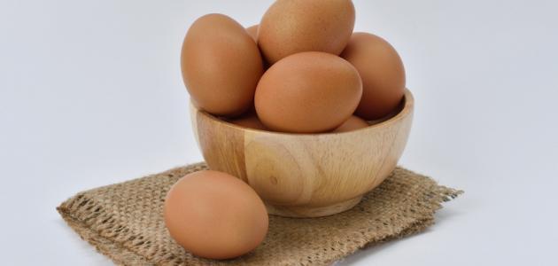 ما فوائد البيض للرجيم