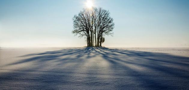 حديث شريف سبعة يظلهم الله في ظله
