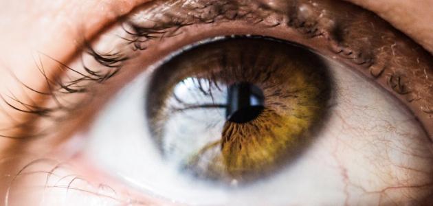علاج جرح قرنية العين