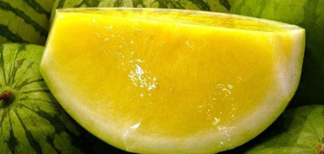 ما هي فوائد بذور البطيخ الاصفر