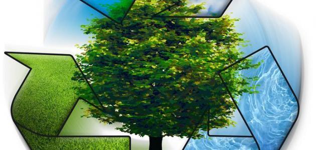 كيفية المحافظة على البيئة من التلوث - حياتكَ