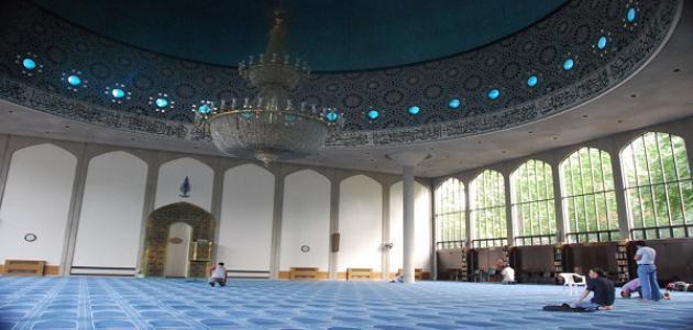 حكم من لا يصلي في المسجد